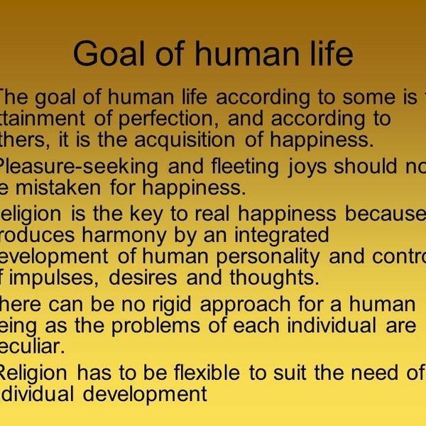 Real Goal Of Human Life Essay Examples