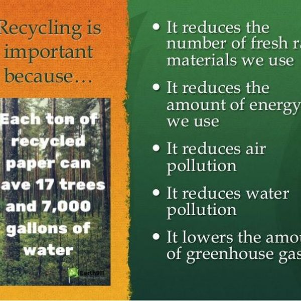 Recycling Is Important Because Essay Examples