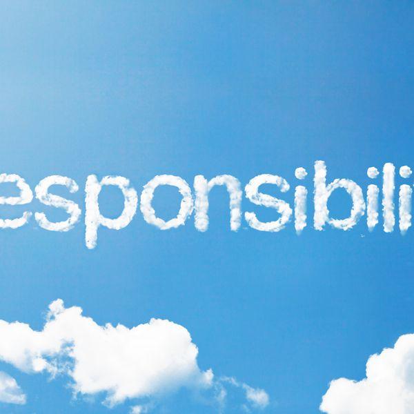 Responsibility Essay Examples