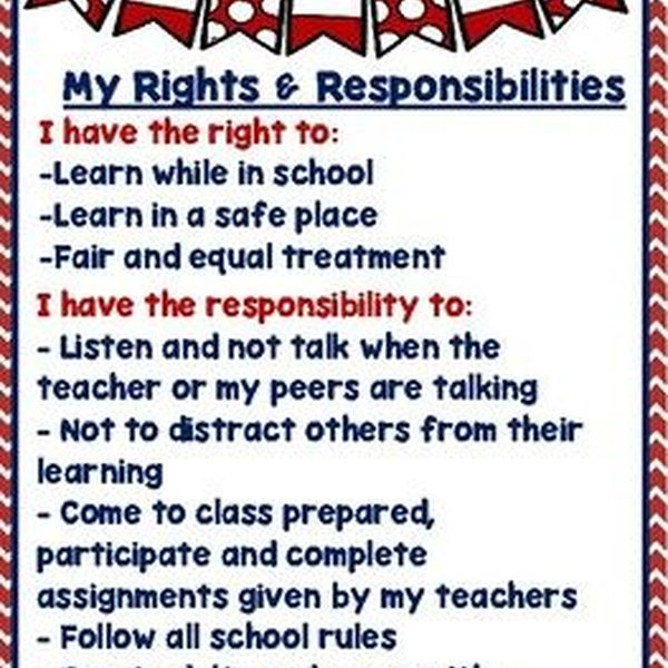 Rights And Responsibilities Of Students Essay Examples