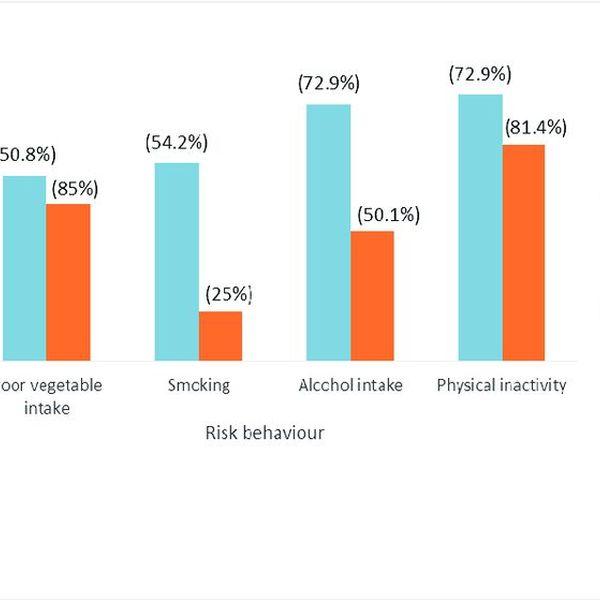 Risk Behaviour Essay Examples