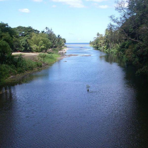 River Essay Examples