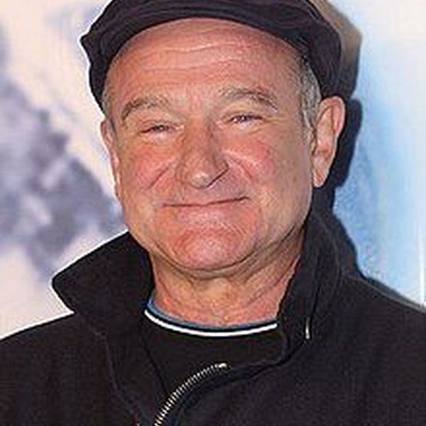 Robin Williams Essay Examples