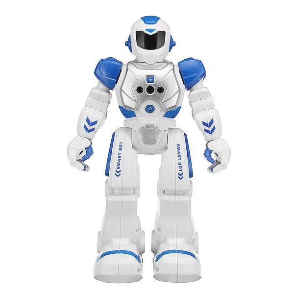 Robot Essay Examples