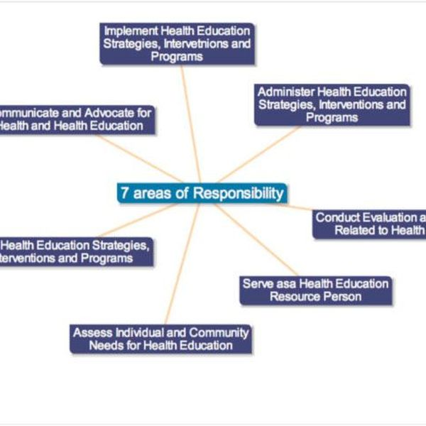 Role Of Health Education Essay Examples