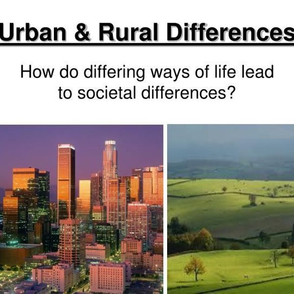 Rural And Urban Life Essay Examples