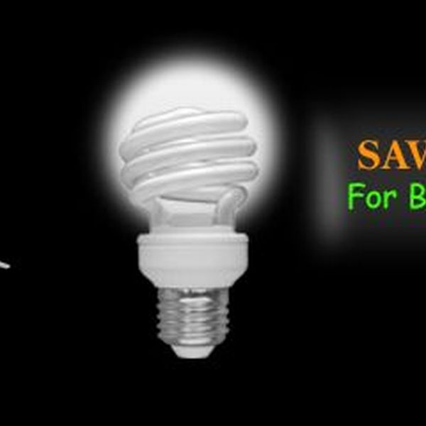 Save Electricity 4 Tomorrow Essay Examples