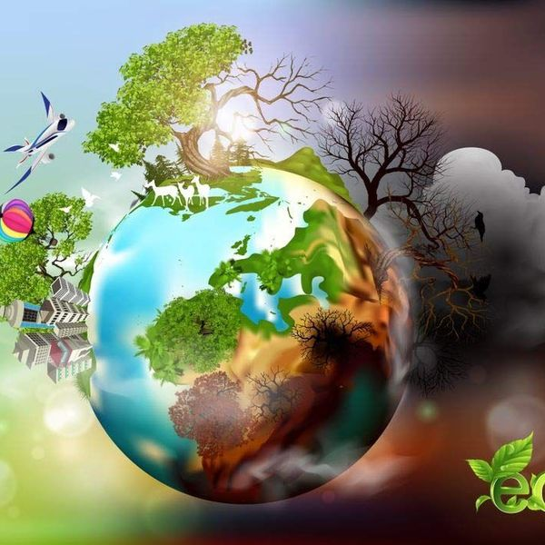 Save Environment Essay Examples