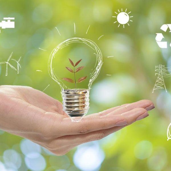 Saving Energy Essay Examples