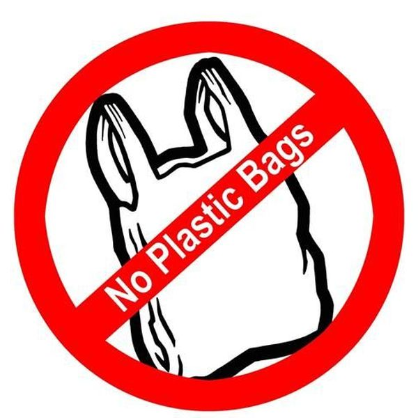 Say No To Polybags Essay Examples