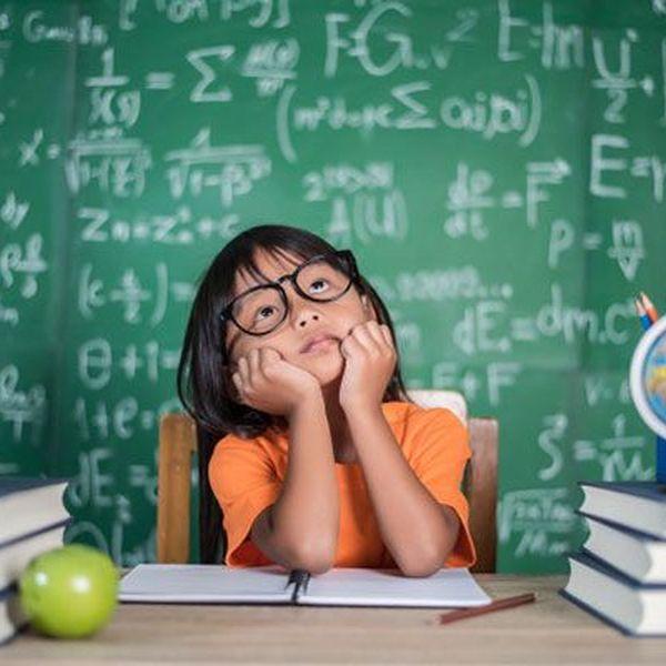 School Education Importance Essay Examples