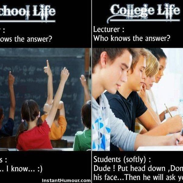 School Life Vs College Life Essay Examples