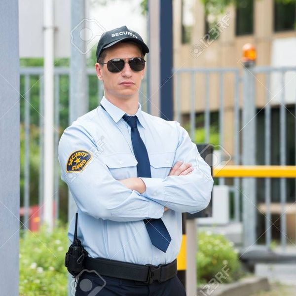 Security Guard Essay Examples