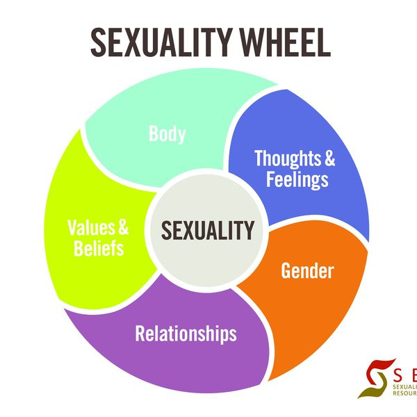 Sexuality Essay Examples