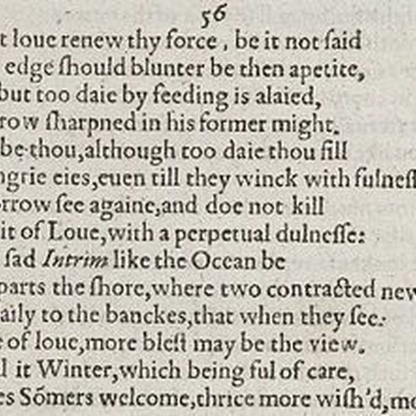 Shakespeare Sonnets Essay Examples