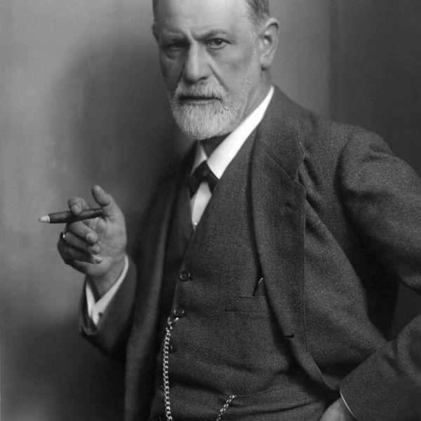 Sigmund Freud Essay Examples