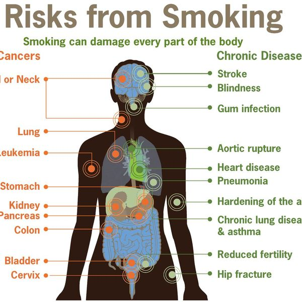 Smoking Is Bad For Health Essay Examples
