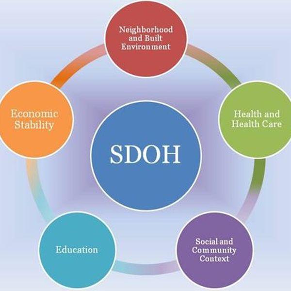 Social Determinants Of Health Essay Examples