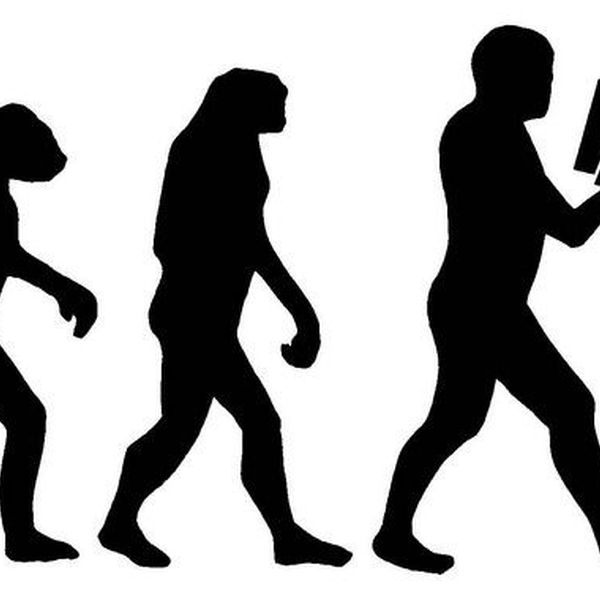 Social Evolution Essay Examples