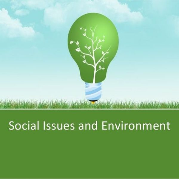 Social Issues And Environment Essay Examples