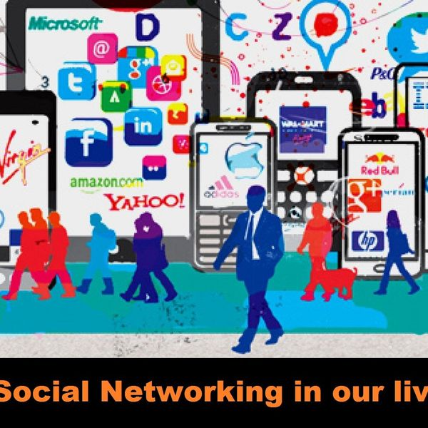 Social Networking In Our Lives Essay Examples