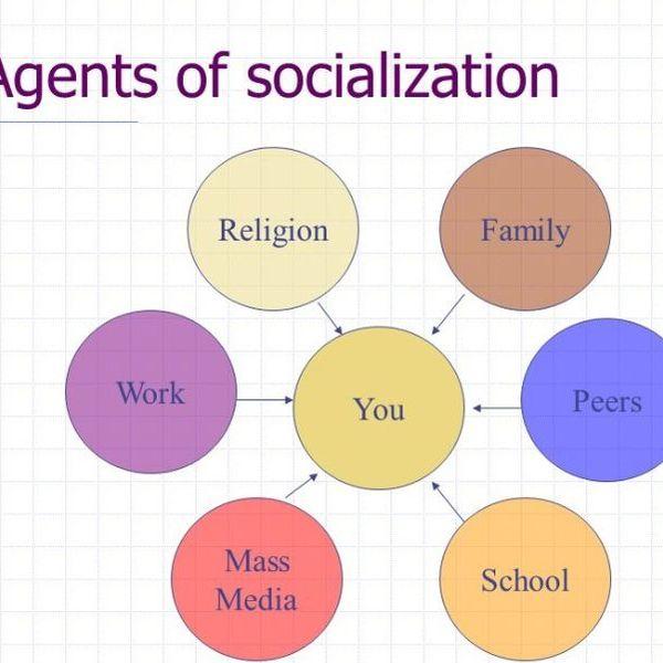 Socialization Essay Examples