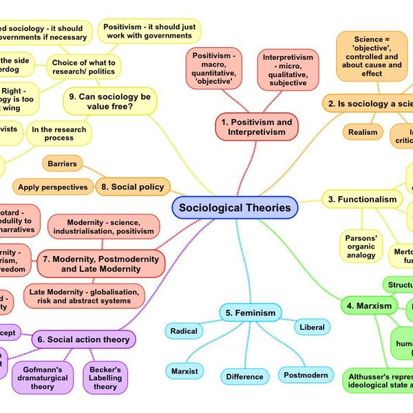 Sociological Theories Essay Examples