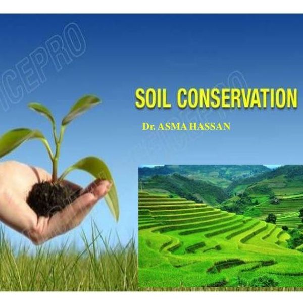 Soil Conservation Essay Examples