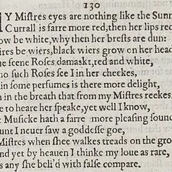 Sonnet 130 Essay Examples