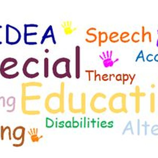 Special education Essay Examples