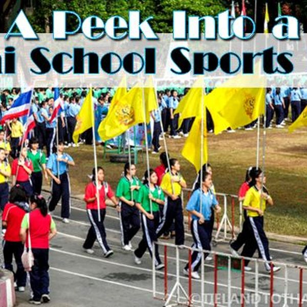 Sports Event In School Essay Examples