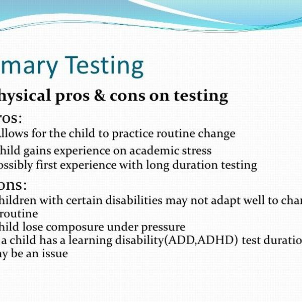 Standardized Testing Pros And Cons Essay Examples