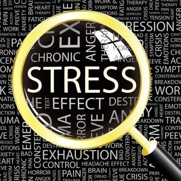 Stress And Its Effects Essay Examples