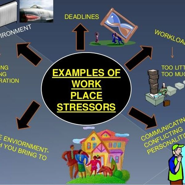 Stress In Daily Life Essay Examples