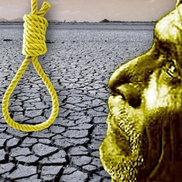 Suicide Of Farmers Essay Examples