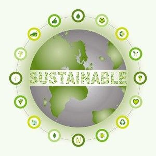 Sustainability Essay Examples