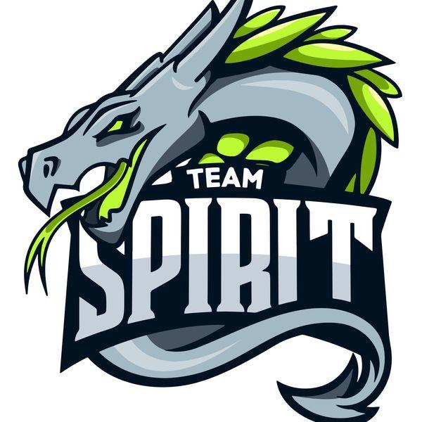 Team Spirit Essay Examples