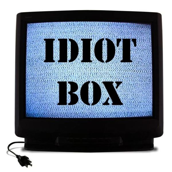 Television An Idiot Box Essay Examples