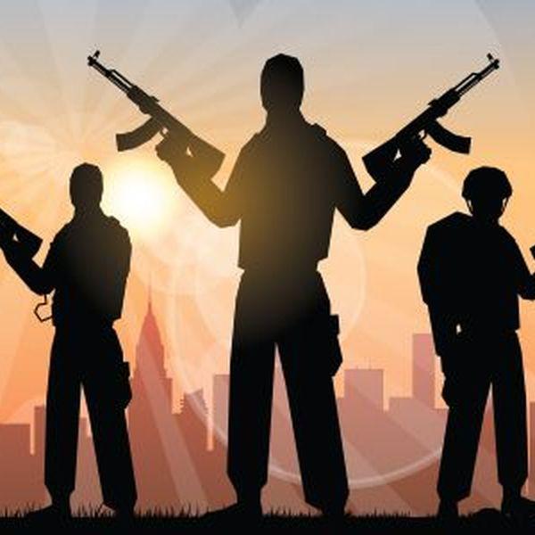 Terrorism Essay Examples