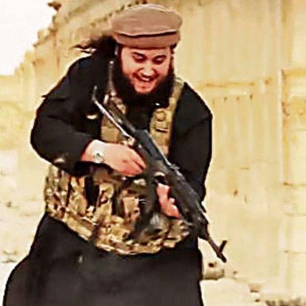 Terrorist Essay Examples