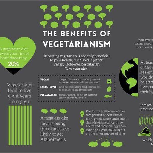 The Benefits Of Vegetarianism Essay Examples