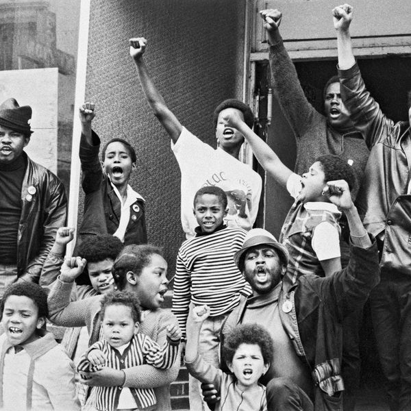 The Black Power Movement Essay Examples