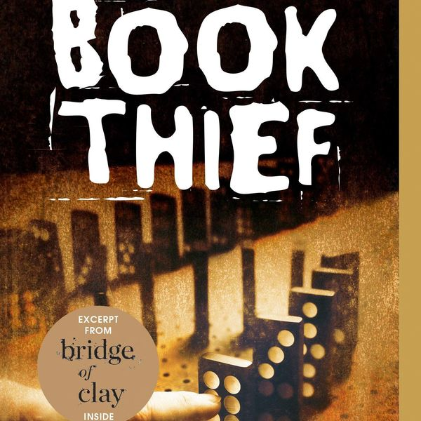 The Book Thief Essay Examples