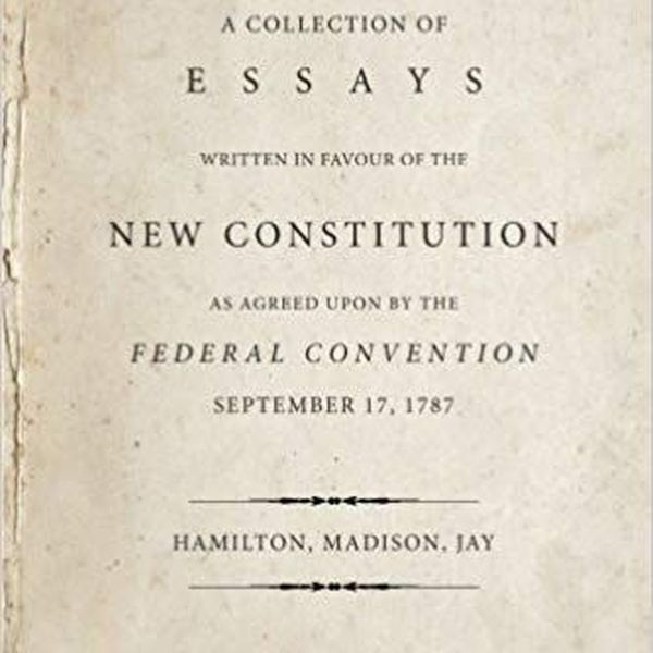 The Federalist Papers Essay Examples