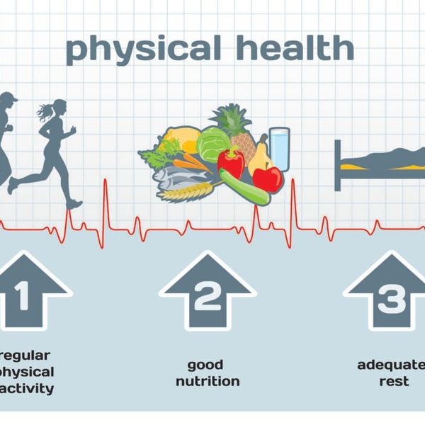 The Importance Of Healthy Lifestyle Essay Examples