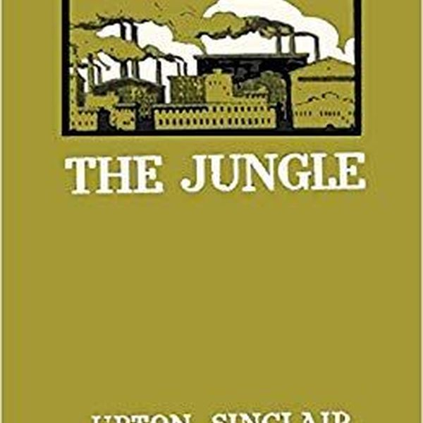 The Jungle By Upton Sinclair Essay Examples