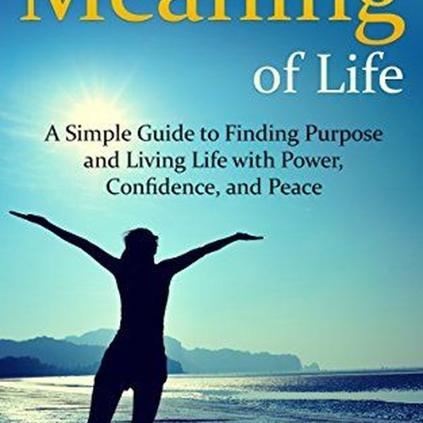 The Meaning Of Life Essay Examples