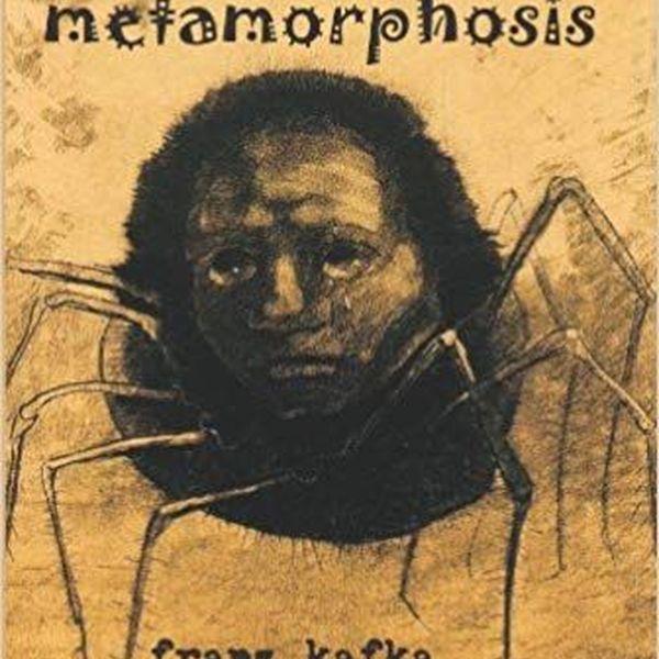 The Metamorphosis Essay Examples