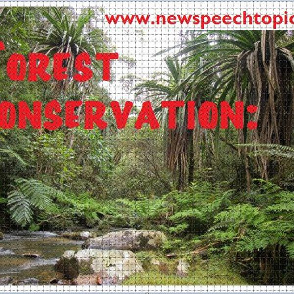 The Need To Preserve Forests Essay Examples