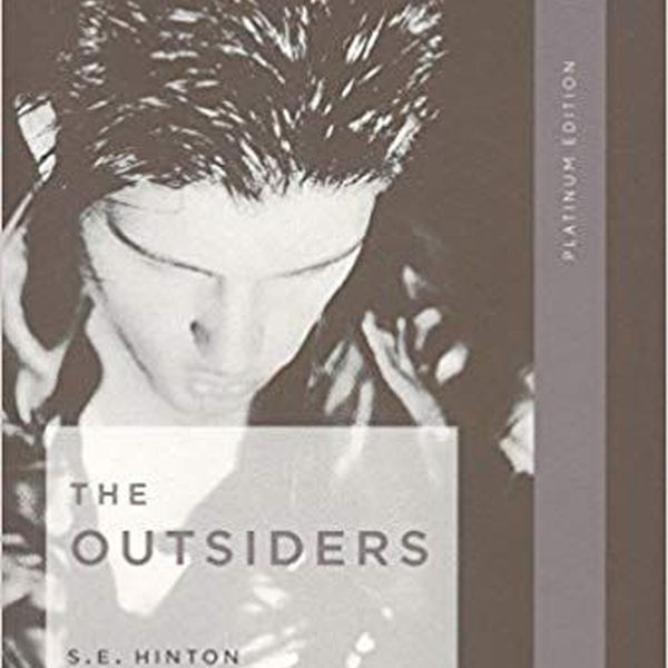 The Outsiders Book Essay Examples